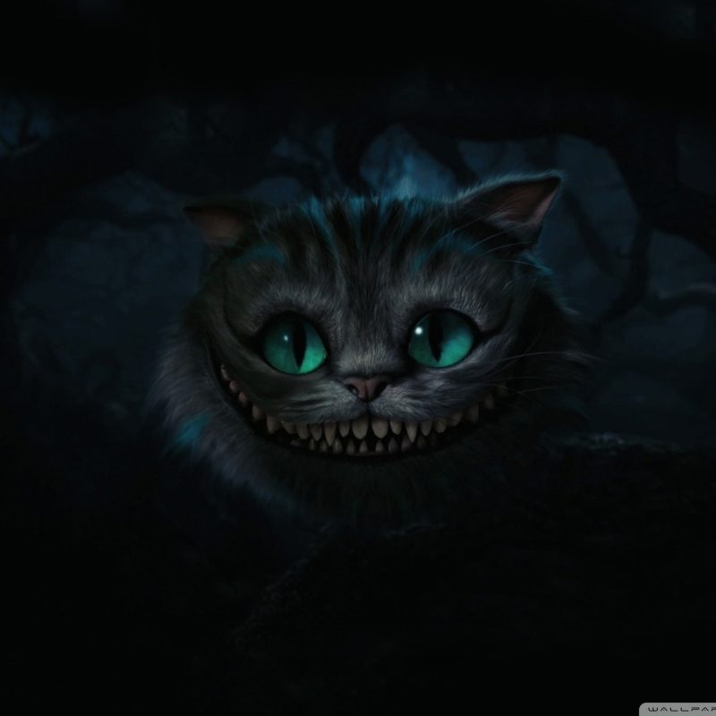 10 Top Cheshire Cat Wallpaper Hd FULL HD 1080p For PC Background 2018 free download cheshire cat alice in wonderland e29da4 4k hd desktop wallpaper for 4k 800x800