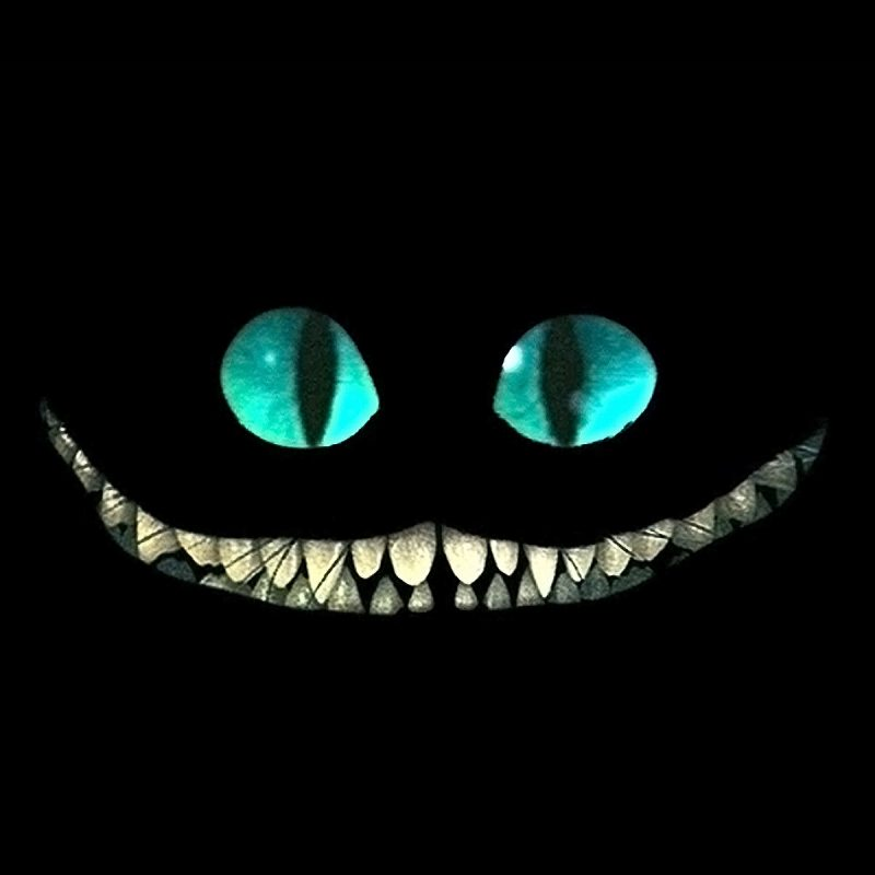 10 Top Cheshire Cat Wallpaper Hd FULL HD 1080p For PC Background 2018 free download cheshire cat wallpaper media file pixelstalk 800x800