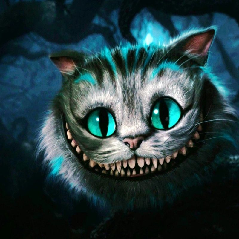 10 Top Cheshire Cat Wallpaper Hd FULL HD 1080p For PC Background 2018 free download cheshire cat wallpapers hd media file pixelstalk 800x800
