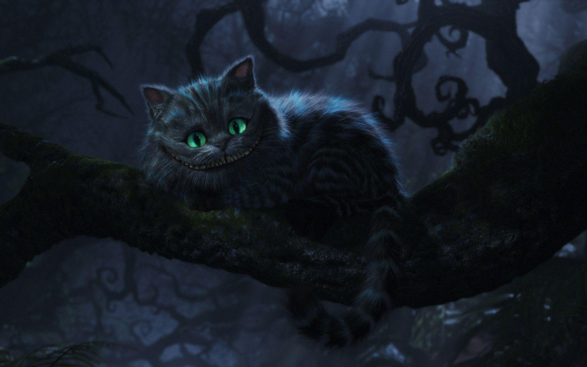 10 Top Cheshire Cat Wallpaper 1920X1080 FULL HD 1080p For PC Desktop