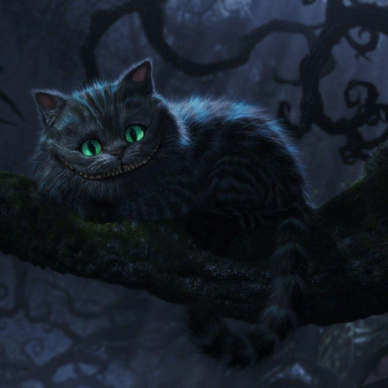 10 Top Cheshire Cat Wallpaper Hd FULL HD 1080p For PC Background 2018 Free Download