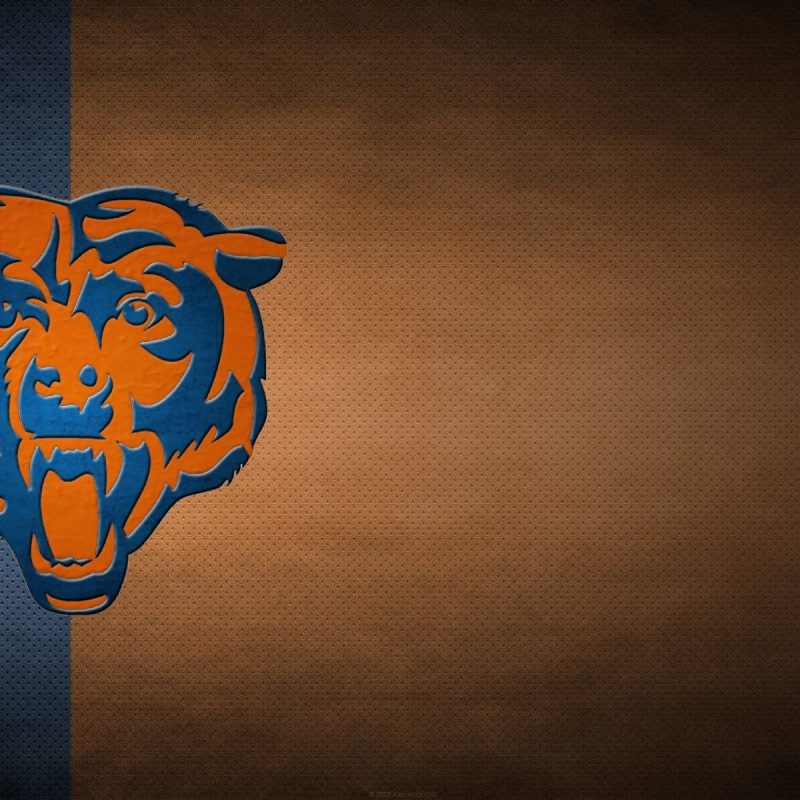 10 Most Popular Chicago Bears Hd Wallpaper FULL HD 1080p For PC Desktop 2018 free download chicago bears desktop wallpapers wallpaper cave 1 800x800