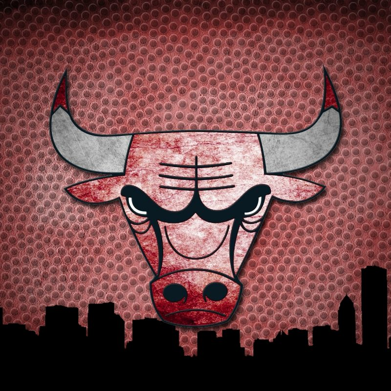 10 Top Chicago Bull Logo Wallpaper FULL HD 1080p For PC Background 2018 free download chicago bulls full hd fond decran and arriere plan 1920x1200 id 800x800