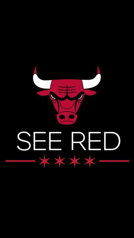 10 Latest Chicago Bulls Wallpaper For Android FULL HD 1080p For PC Desktop 2020 free download chicago bulls iphone 6 wallpapers chicago bulls chicago bulls 450x800