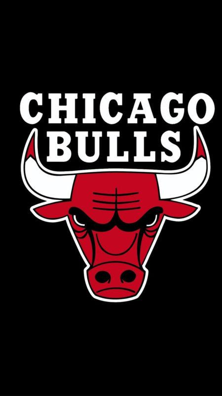 10 Best Chicago Bulls Hd Wallpaper FULL HD 1080p For PC Desktop 2018 free download chicago bulls wallpapers hd wallpapers id 17616 450x800