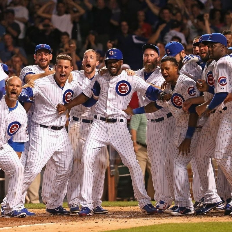 10 Best Chicago Cubs 2016 Wallpaper FULL HD 1920×1080 For PC Background 2018 free download chicago cubs 2015 video tribute youtube 800x800