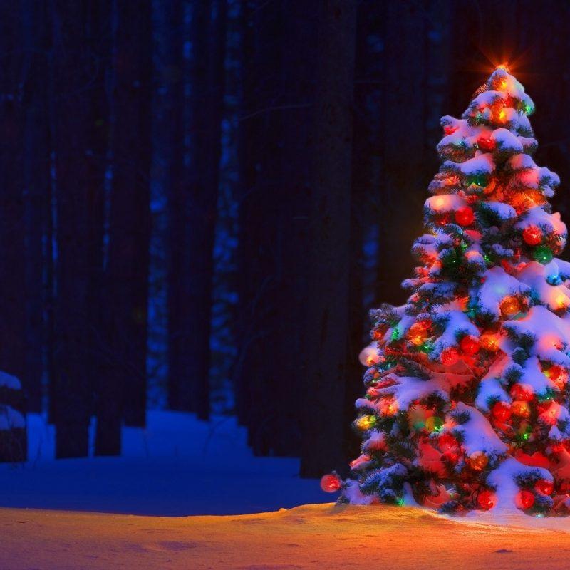 10 Latest Christmas Lights Widescreen Desktop Wallpaper FULL HD 1920×1080 For PC Desktop 2018 free download christmas lights tree desktop backgrounds wallpaper wiki 1 800x800