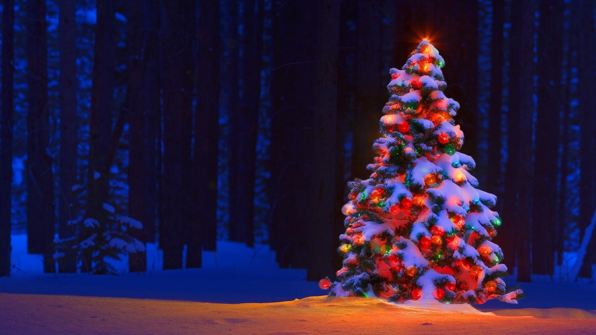christmas-lights-tree-desktop-backgrounds - wallpaper.wiki