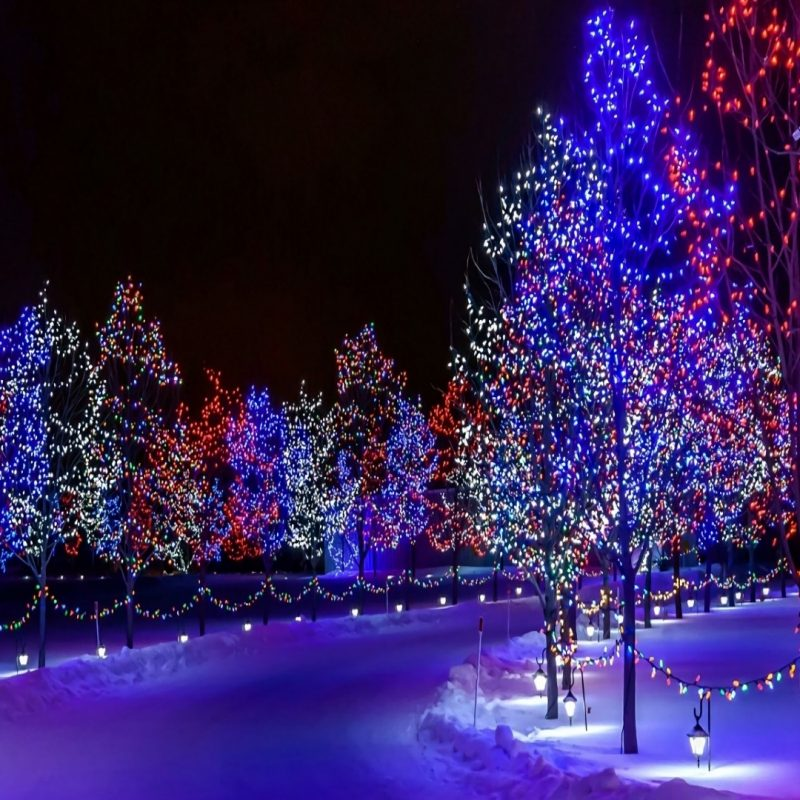 10 Best Winter Christmas Lights Wallpaper FULL HD 1080p For PC Background 2018 free download christmas lights wallpaper wallpaper studio 10 tens of thousands 1 800x800