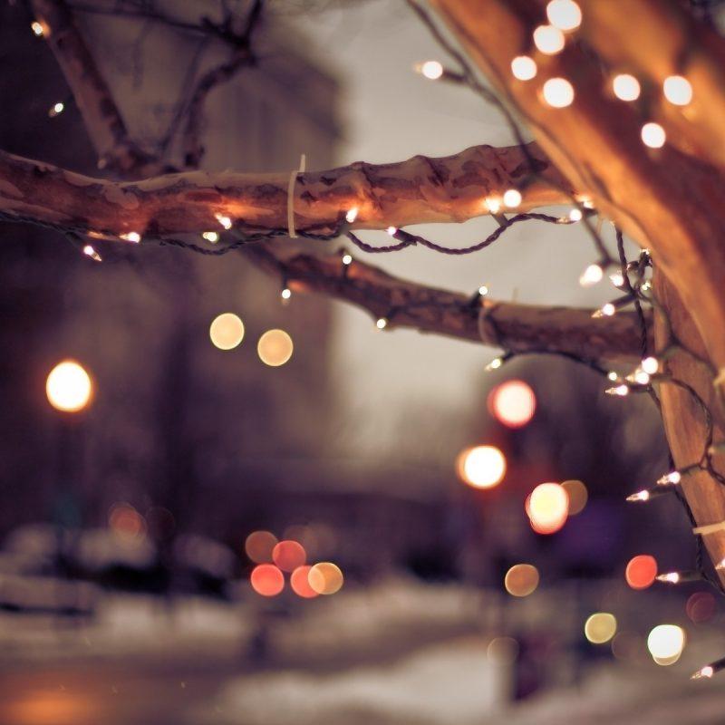 10 Top Christmas Lights Desktop Wallpaper FULL HD 1080p For PC Desktop 2018 free download christmas lights wallpapers hd pictures one hd wallpaper pictures 3 800x800
