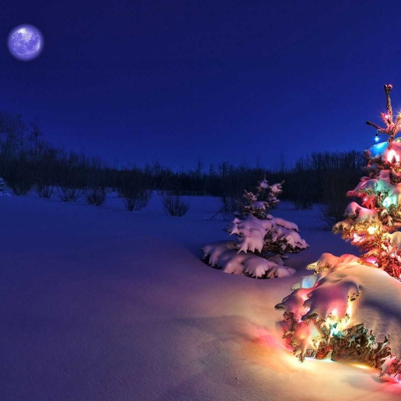 10 Most Popular Christmas Scenes Wallpaper Free FULL HD 1920×1080 For PC Desktop 2018 free download christmas nature scenes hd wallpapers 6 christmas nature scenes hd 800x800