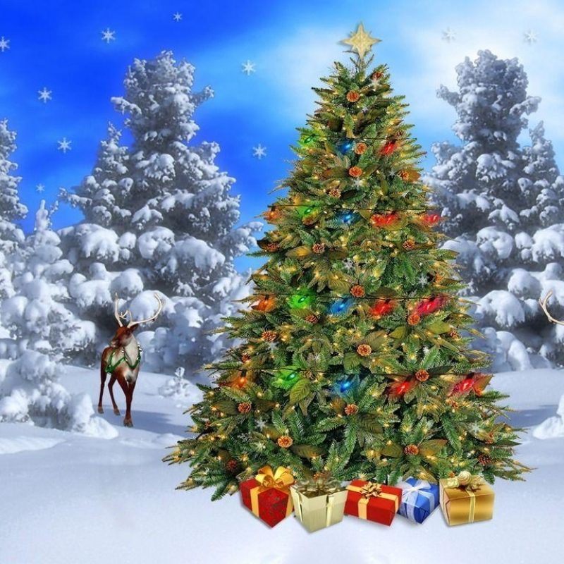 10 New Christmas Scenes For Desktop FULL HD 1080p For PC Background 2018 free download christmas snow scene wallpapers wallpaper cave 2 800x800
