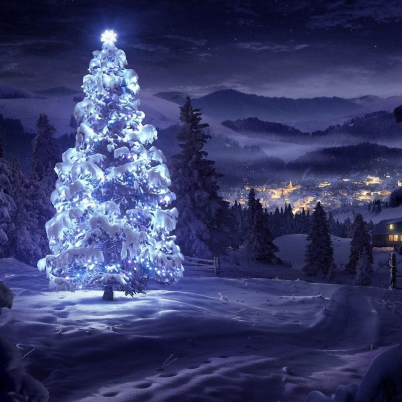 10 Best Christmas Tree Snow Wallpaper Hd FULL HD 1920×1080 For PC Background 2021 free download christmas tree snow wallpaper 73 images 800x800