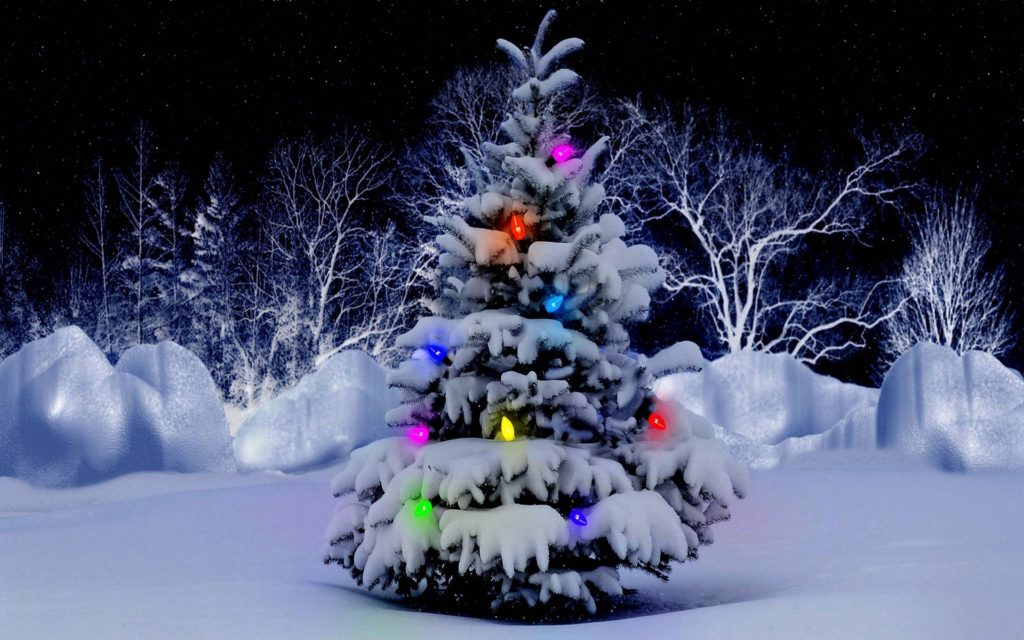10 New Christmas Tree Wallpaper Hd FULL HD 1920×1080 For PC Background 2020 free download christmas tree wallpapers free wallpaper cave 1024x640