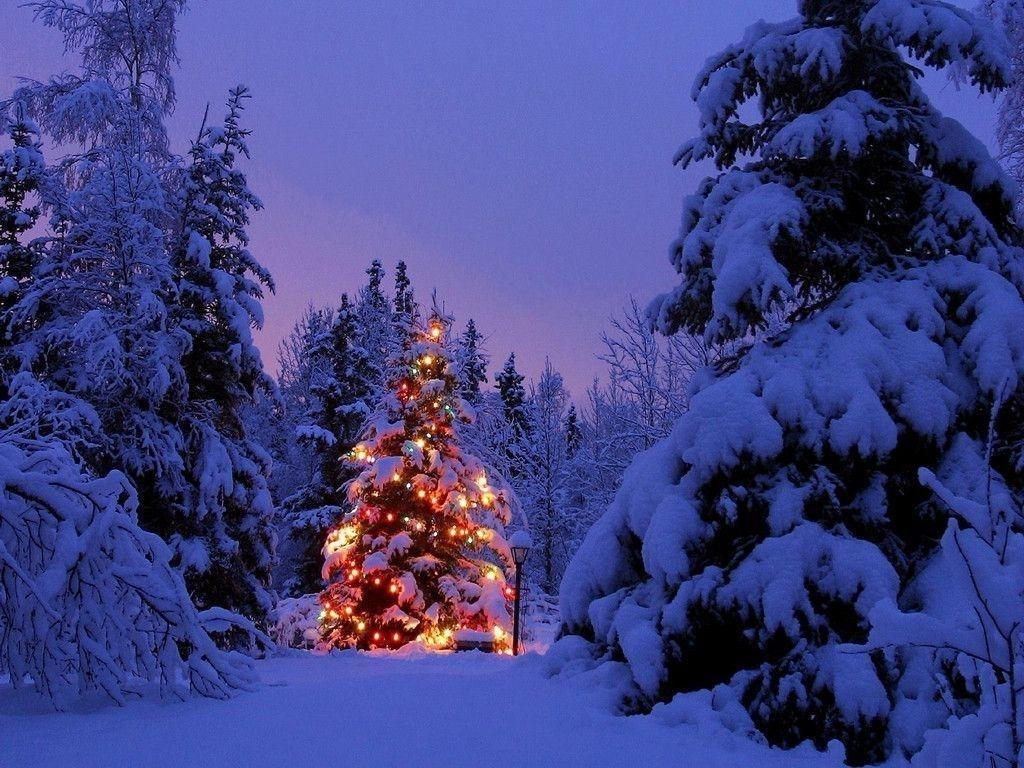 christmas winter scenes wallpapers - wallpaper cave