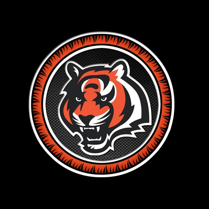 10 Most Popular Cincinnati Bengals Hd Wallpaper FULL HD 1080p For PC Background 2020 free download cincinnati bengals circle 2560x1600 photo 800x800