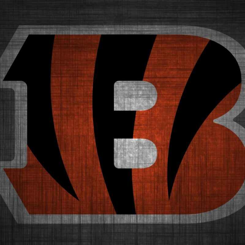 10 Most Popular Cincinnati Bengals Screen Savers FULL HD 1080p For PC Background 2018 free download cincinnati bengals desktop wallpaper 800x800