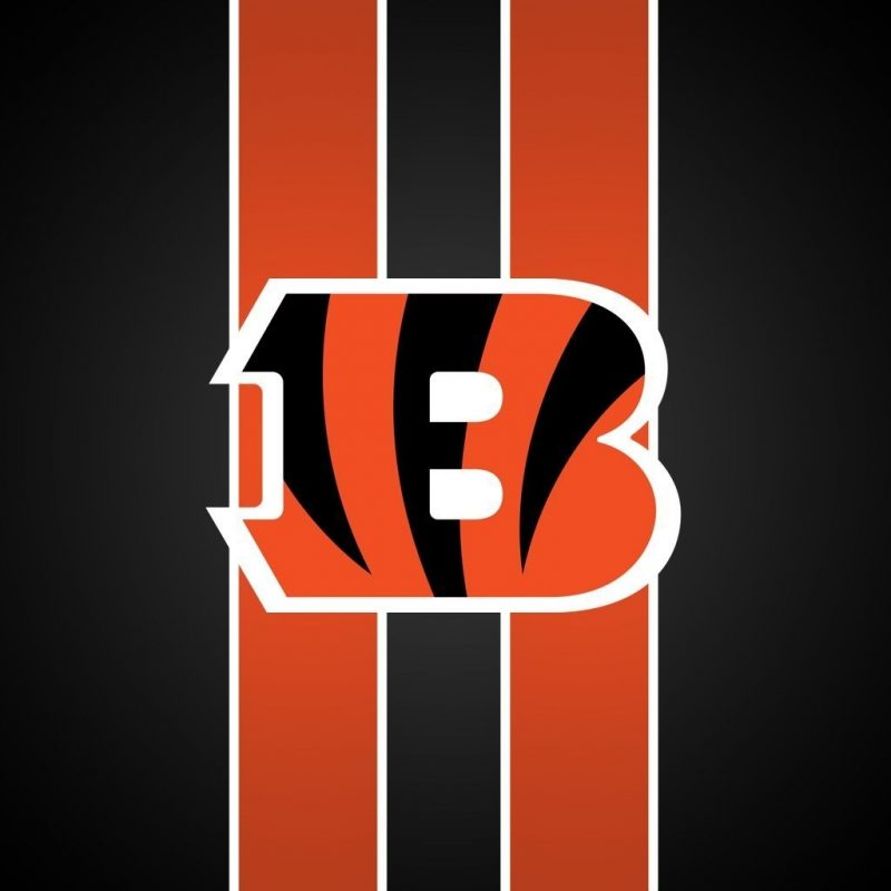 10 Most Popular Cincinnati Bengals Screen Savers FULL HD 1080p For PC Background 2018 free download cincinnati bengals hd wallpapers backgrounds wallpaper hd 800x800