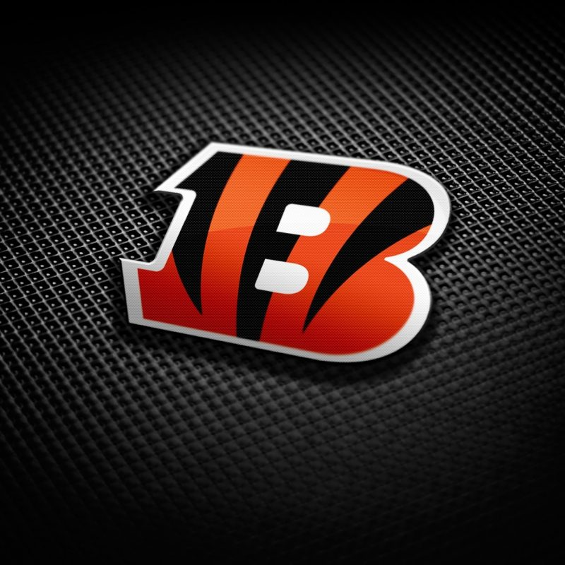 10 Most Popular Cincinnati Bengals Screen Savers FULL HD 1080p For PC Background 2018 free download cincinnati bengals wallpaper 70 xshyfc 800x800