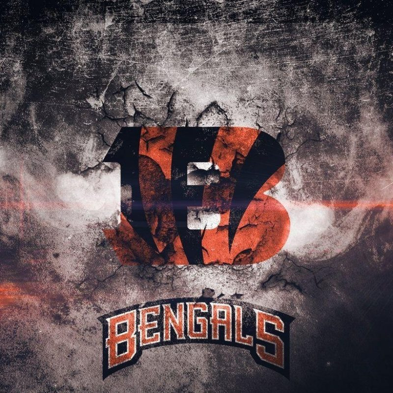 10 Most Popular Cincinnati Bengals Screen Savers FULL HD 1080p For PC Background 2018 free download cincinnati bengals wallpapers wallpaper cave 1 800x800