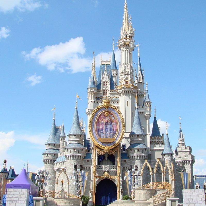 10 Latest Disney World Castle Wallpaper FULL HD 1080p For PC Background 2018 free download cinderella castle 800x800