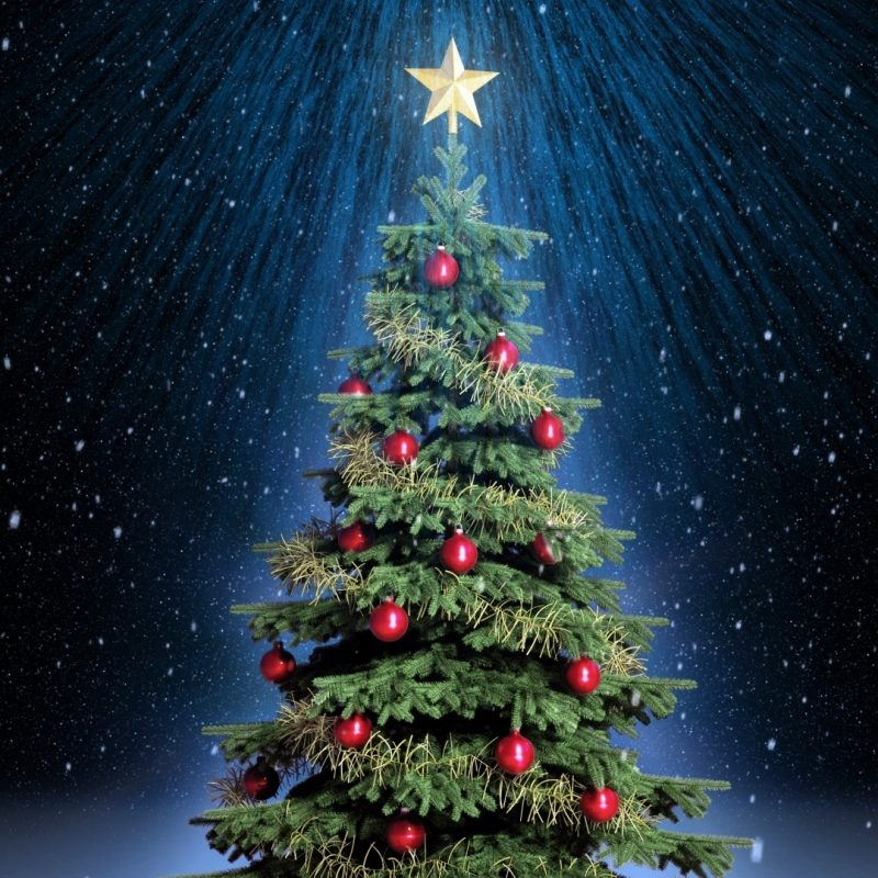 10 Top Free Christmas Desktop Wallpaper 1920X1080 FULL HD 1920×1080 For PC Background 2018 free download classic christmas tree e29da4 4k hd desktop wallpaper for 4k ultra hd tv 800x800