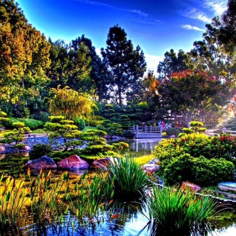 10 Best Japanese Garden Wallpaper 1920X1080 FULL HD 1920×1080 For PC Background 2018 free download colorful nature in the sun rays japanese garden wallpaper 800x800