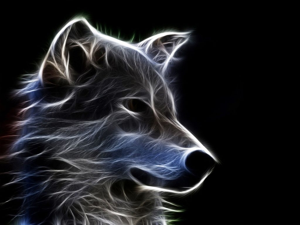 10 Top Cool Animal Wallpapers Wolf FULL HD 1920×1080 For PC Desktop 2018 free download cool 3d backgrounds hd download free wallpapers backgrounds 1024x768