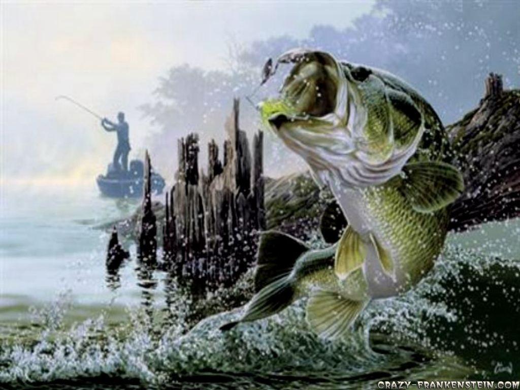 cool fishing quotes. quotesgram   fishing   pinterest   fish