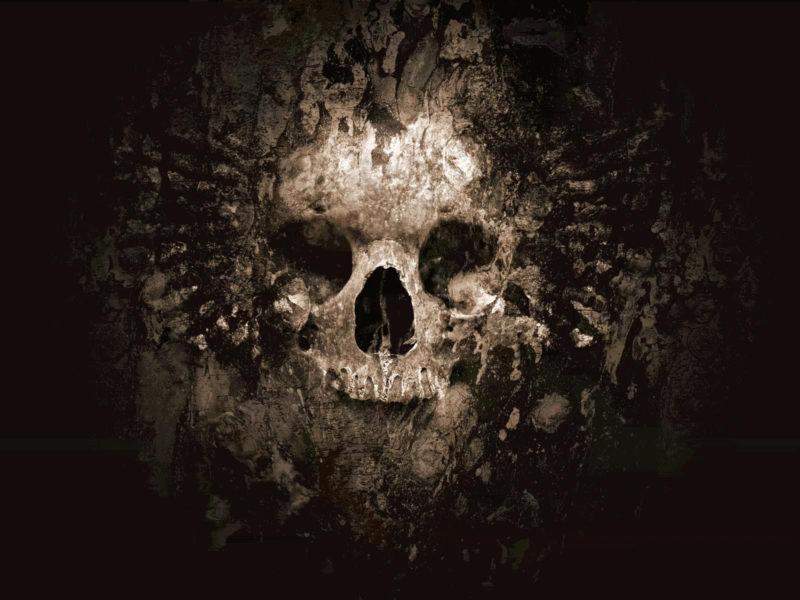10 Top Cool Skulls Wallpapers FULL HD 1920×1080 For PC Desktop 2018 free download cool skull pictures skulls skull wallpaper skulls skull 800x600