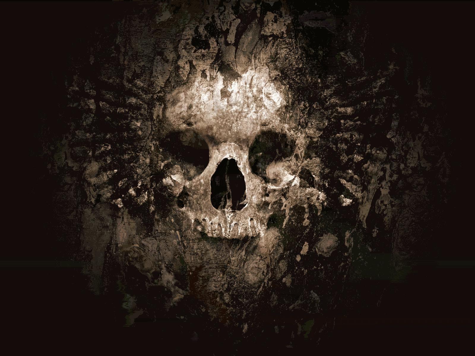 cool skull pictures | skulls skull wallpaper | ~ skulls~ | skull