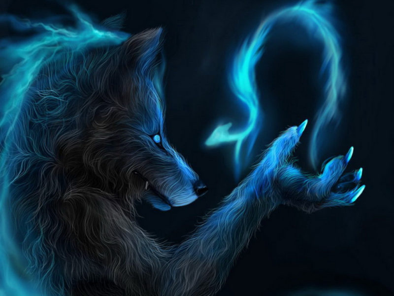 10 Top Cool Wallpapers Of Wolves FULL HD 1920×1080 For PC Desktop 2021 free download cool wallpapers of wolves wallpapersafari 800x600