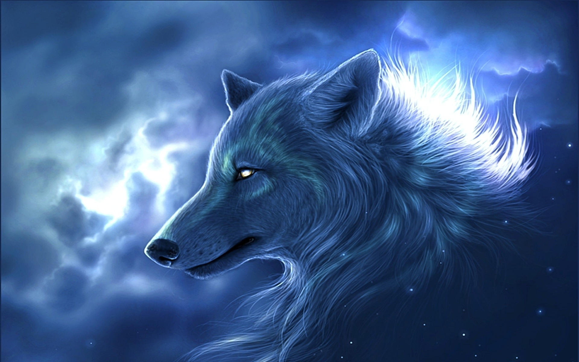 cool wolf desktop backgrounds wallpaper