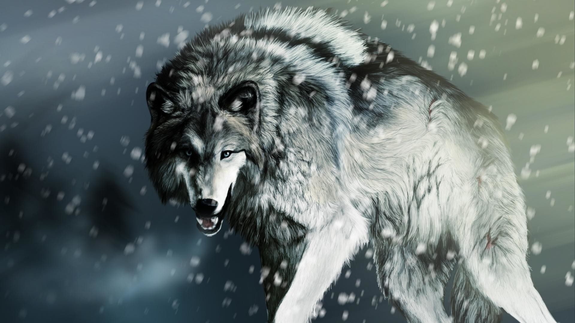 cool wolf wallpaper (61+ images)