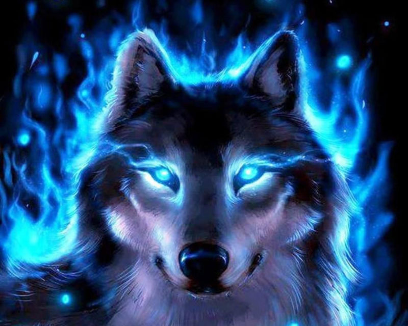 10 Top Cool Wallpapers Of Wolves FULL HD 1920×1080 For PC Desktop 2021 free download cool wolves backgrounds wallpaper free hd wallpapers book art 2 800x640