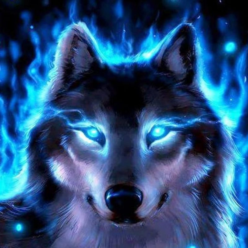 10 Best Cool Wolf Wallpaper Hd FULL HD 1920×1080 For PC Background 2018 free download cool wolves backgrounds wallpaper free hd wallpapers book art 800x800