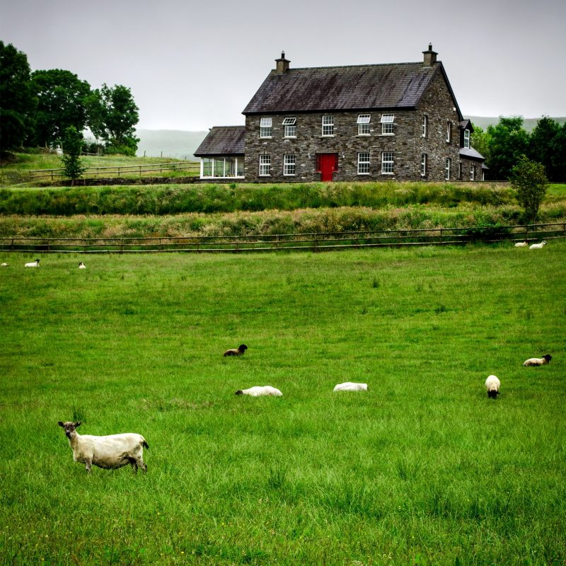 10 Most Popular Images Of Ireland Countryside FULL HD 1080p For PC Background 2018 free download countryside county kerry 002 we e299a1 ireland pinterest ireland 800x800
