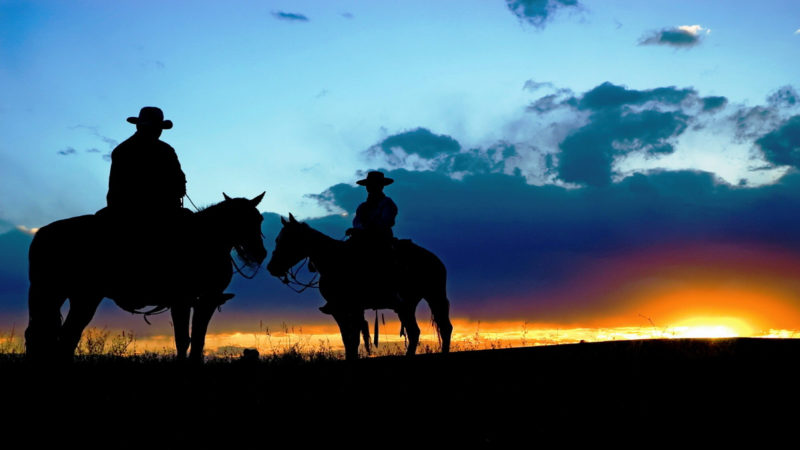 10 New Cowboy Screen Savers FULL HD 1920×1080 For PC Background 2020 free download cow screensaver ecosia 800x450