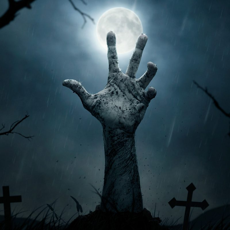 10 Most Popular Cemetery At Night Wallpaper FULL HD 1920×1080 For PC Background 2020 free download creepy night cemetery with a zombie hand wallpaper wallpaper 800x800