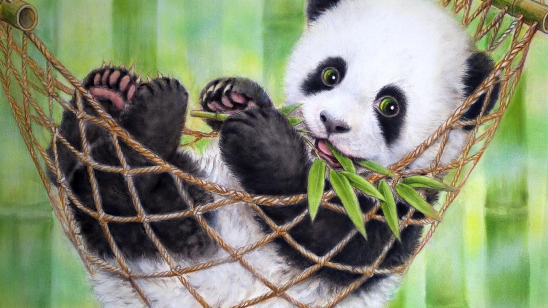 cute baby panda bear wallpaper - 2018 cute screensavers