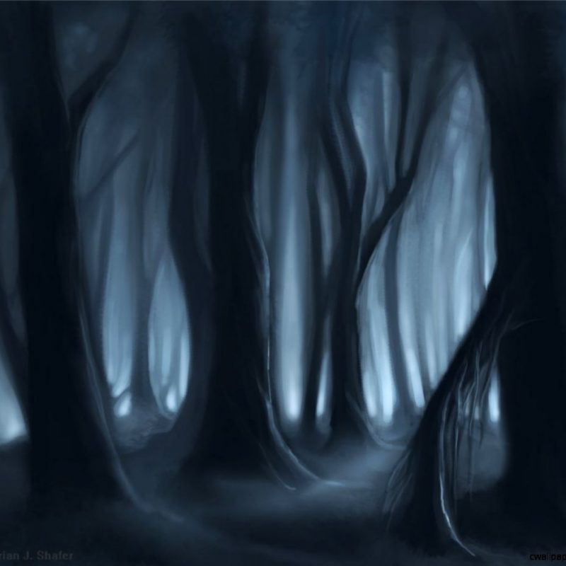 10 Top Dark Forest Background Drawing FULL HD 1080p For PC Background 2018 free download dark forest background drawing wallpapers gallery 800x800
