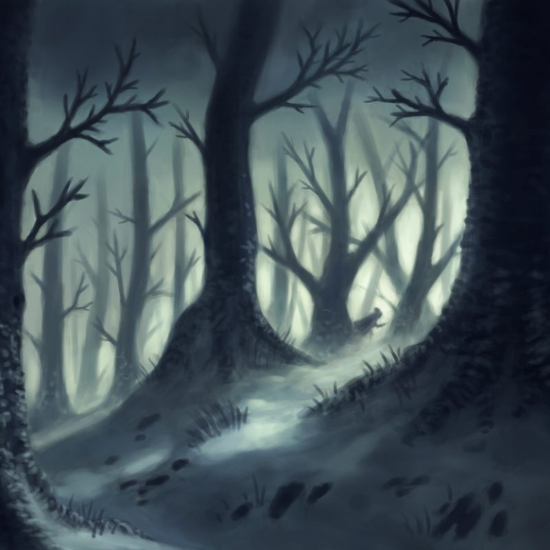 10 Top Dark Forest Background Drawing FULL HD 1080p For PC Background 2018 free download dark forest drawing at getdrawings free for personal use dark 800x800