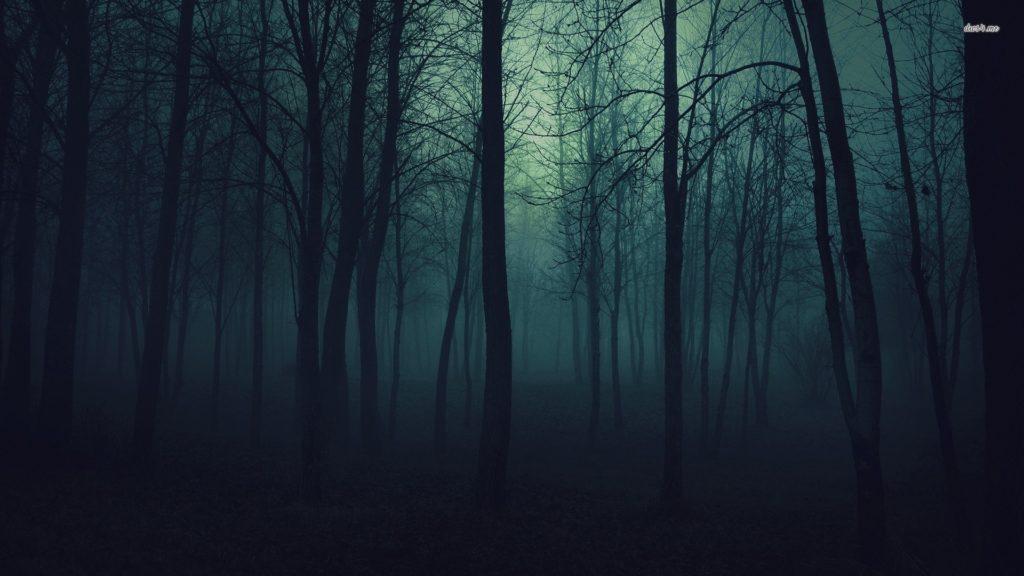 10 Top Dark Forest Background Tumblr FULL HD 1080p For PC Background 2018 free download dark forest tumblr d0bfd0bed0b8d181d0ba d0b2 google tattoos pinterest dark 1024x576