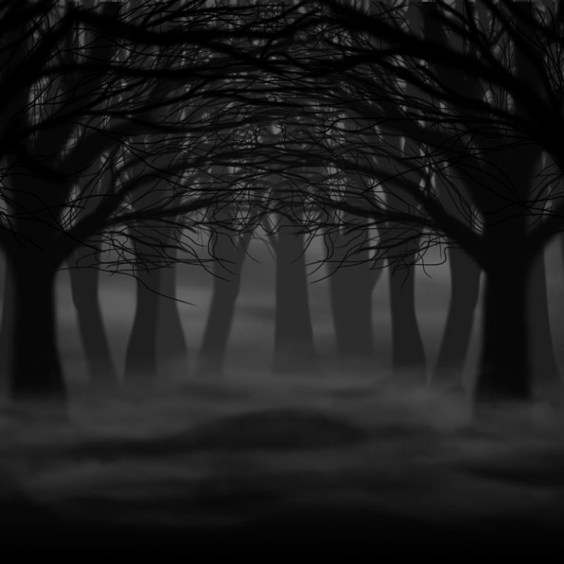 10 Top Dark Forest Background Drawing FULL HD 1080p For PC Background 2018 free download dark forestshystriker on deviantart 800x800