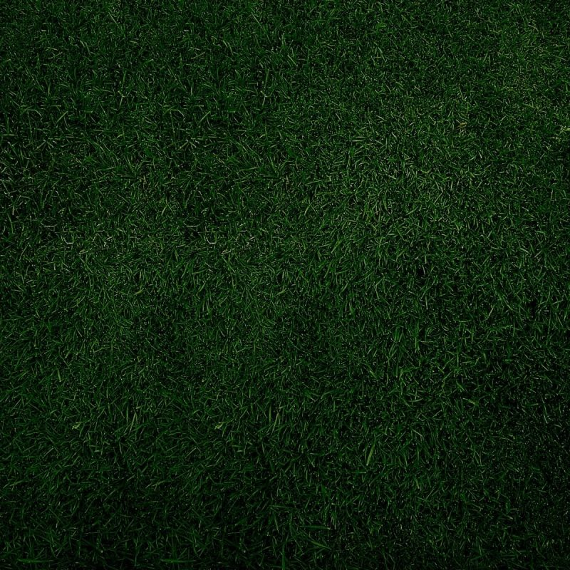 10 Most Popular Plain Dark Green Background FULL HD 1080p For PC Background 2021 free download dark green wallpaper hd 59 images 1 800x800