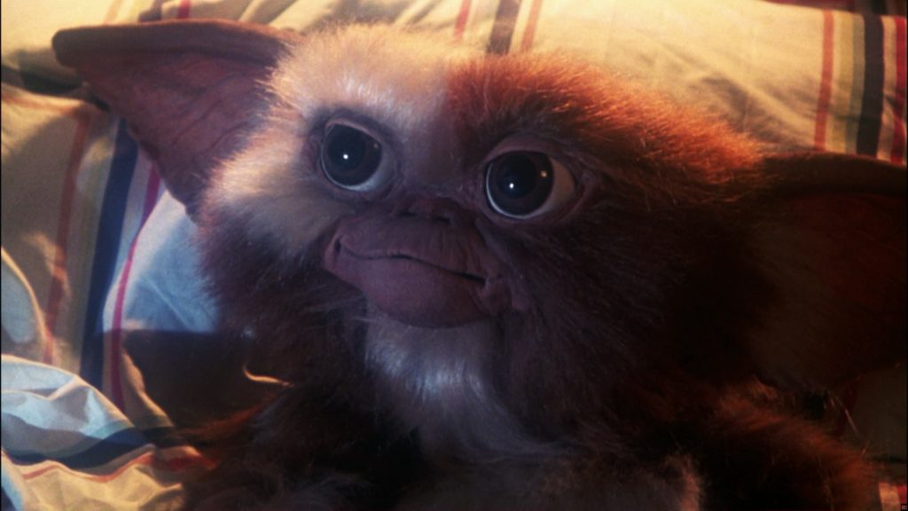 10 New Pictures Of Gizmo From Gremlins FULL HD 1080p For PC Background 2018 free download dark gremlins 3 script ponders the murder of gizmo bloody 1024x576