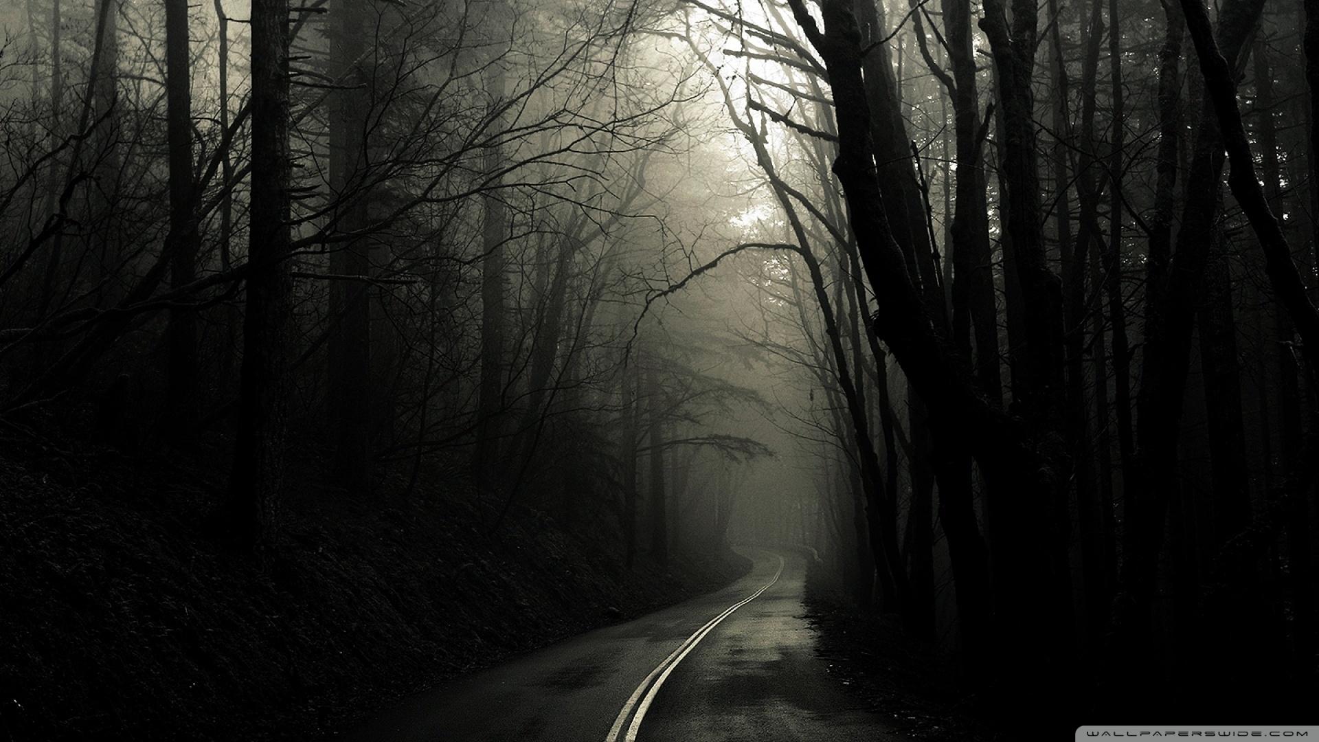dark road forest ❤ 4k hd desktop wallpaper for 4k ultra hd tv