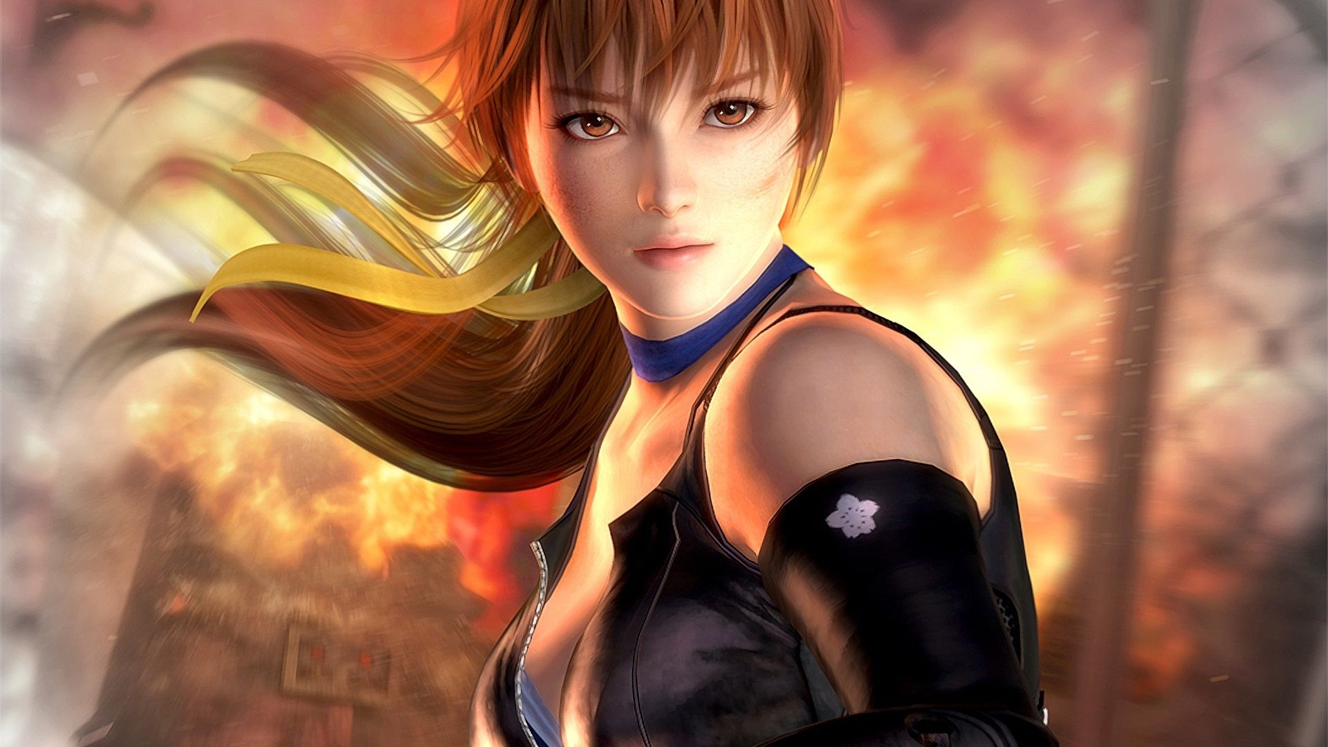 dead or alive 5 wallpapers, 45 high quality dead or alive 5 | all
