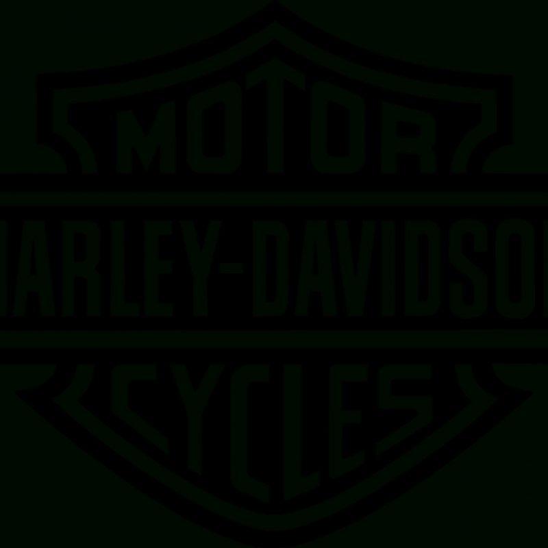 10 Most Popular Harley Davidson Logos Images FULL HD 1080p For PC Desktop 2018 free download decora con vinilo logo harley davidson carteles pinterest 800x800
