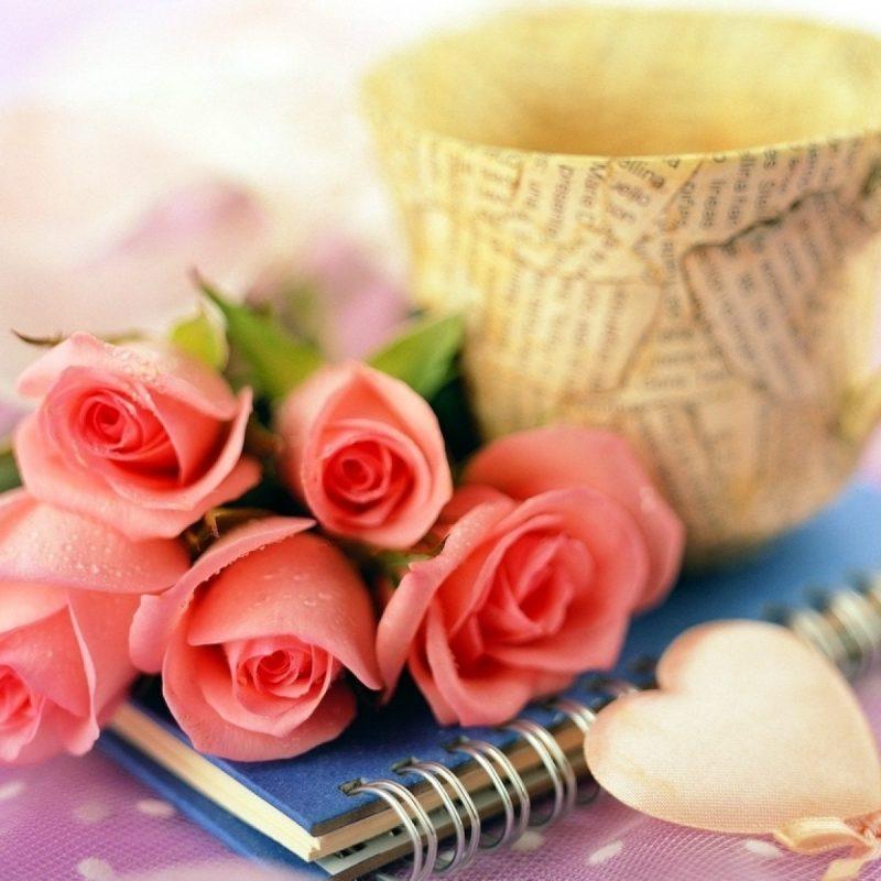 10 Most Popular Rose Wallpaper For Desktop FULL HD 1080p For PC Desktop 2018 free download decorative desktop hd pink love rose wallpaper download 800x800